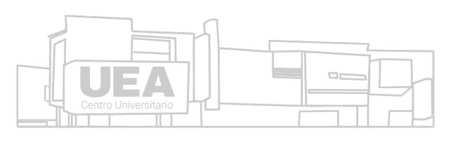 UEA fachada icon logo -01